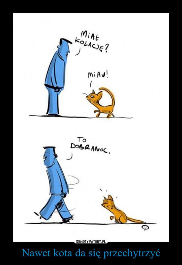 Nawet kota da się przechytrzyć –