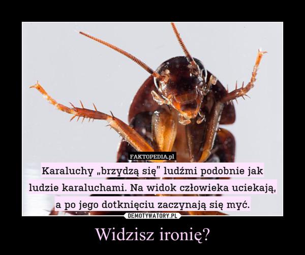 Widzisz ironię? –