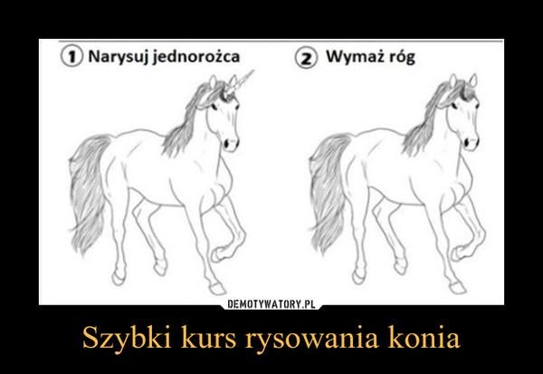 Szybki kurs rysowania konia –
