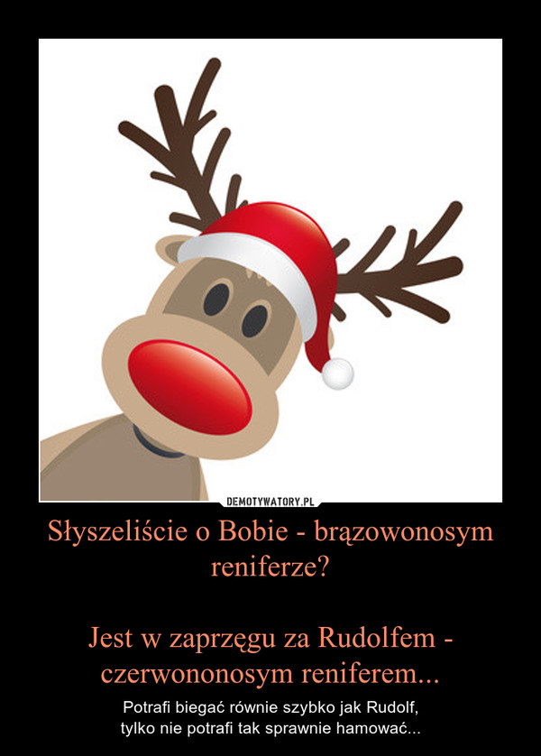 Słyszeliście o Bobie - brązowonosym reniferze?Jest w zaprzęgu za Rudolfem - czerwononosym reniferem... – Potrafi biegać równie szybko jak Rudolf,tylko nie potrafi tak sprawnie hamować...