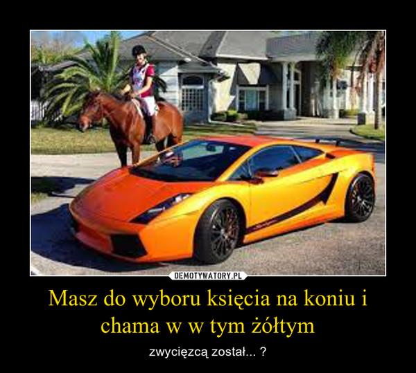 Masz do wyboru księcia na koniu i chama w w tym żółtym – zwycięzcą został... ?
