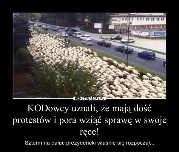 KODowcy uznali, że mają dość protestów i pora wziąć sprawę w swoje ręce! – Szturm na pałac prezydencki właśnie się rozpoczął...