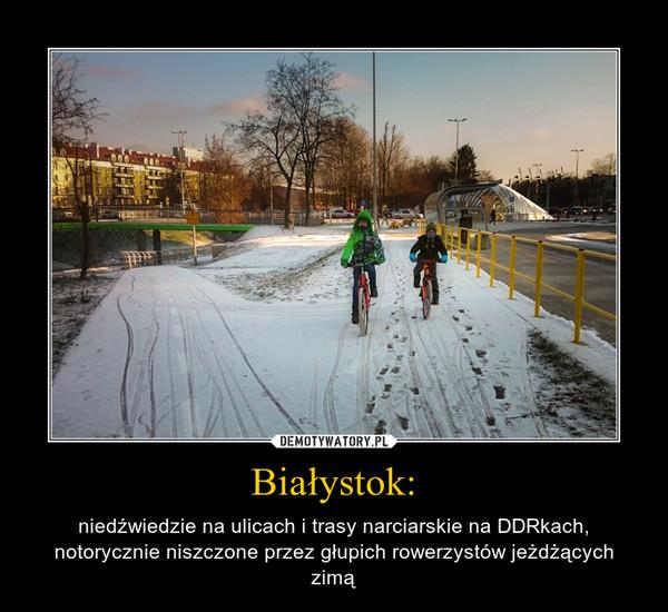 Białystok: – niedźwiedzie na ulicach i trasy narciarskie na DDRkach, notorycznie niszczone przez głupich rowerzystów jeżdżących zimą