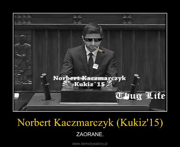 Norbert Kaczmarczyk (Kukiz'15) – ZAORANE.