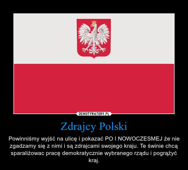 Zdrajcy Polski – Powinniśmy wyjść na ulicę i pokazać PO I NOWOCZESMEJ że nie zgadzamy się z nimi i są zdrajcami swojego kraju. Te świnie chcą sparaliżowac pracę demokratycznie wybranego rządu i pogrążyć kraj.