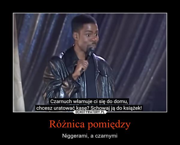 Różnica pomiędzy – Niggerami, a czarnymi