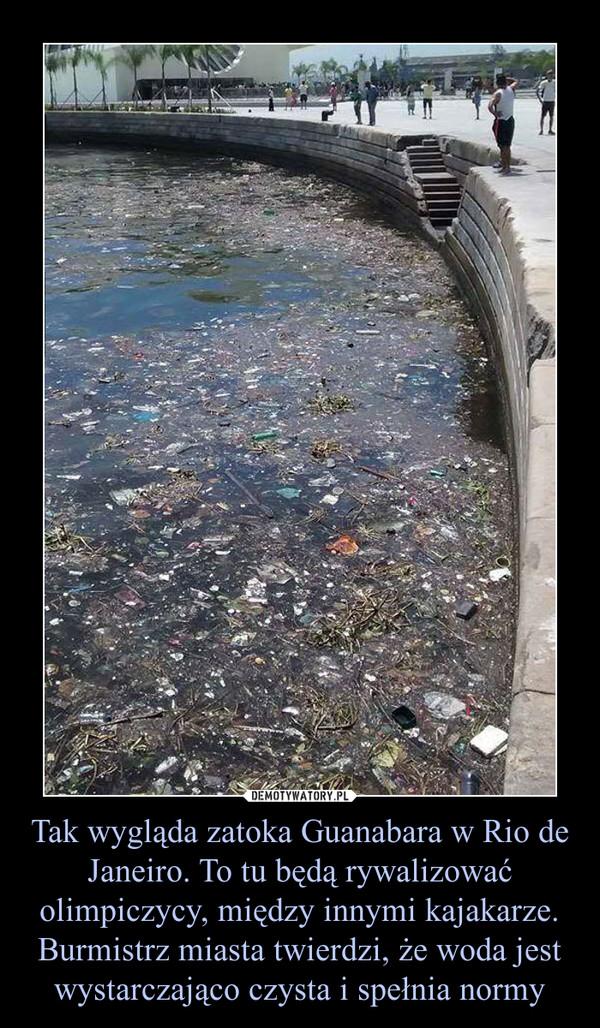Tak wygląda zatoka Guanabara w Rio de Janeiro. To tu będą rywalizować olimpiczycy, między innymi kajakarze. Burmistrz miasta twierdzi, że woda jest wystarczająco czysta i spełnia normy –