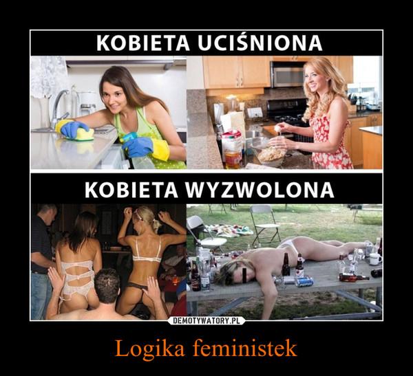 Logika feministek –