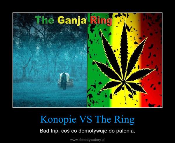 Konopie VS The Ring – Bad trip, coś co demotywuje do palenia.