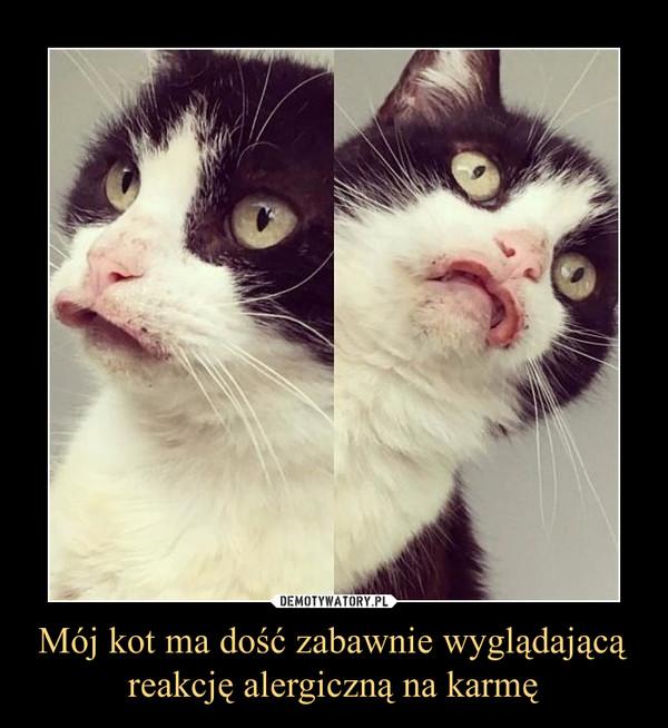Mój kot ma dość zabawnie wyglądającą reakcję alergiczną na karmę –