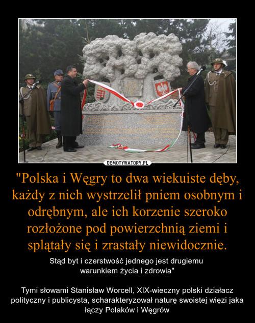 """""""Polska i Węgry to dwa wiekuiste dęby, każdy z nich wystrzelił pniem osobnym i odrębnym, ale ich korzenie szeroko rozłożone pod powierzchnią ziemi i splątały się i zrastały niewidocznie."""