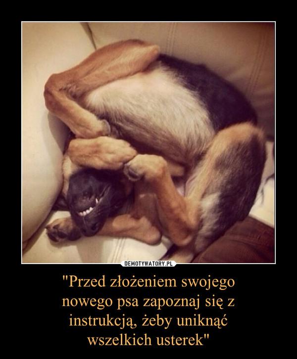 """""""Przed złożeniem swojegonowego psa zapoznaj się zinstrukcją, żeby uniknąćwszelkich usterek"""" –"""