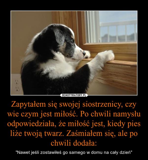 """Zapytałem się swojej siostrzenicy, czy wie czym jest miłość. Po chwili namysłu odpowiedziała, że miłość jest, kiedy pies liże twoją twarz. Zaśmiałem się, ale po chwili dodała: – """"Nawet jeśli zostawiłeś go samego w domu na cały dzień"""""""