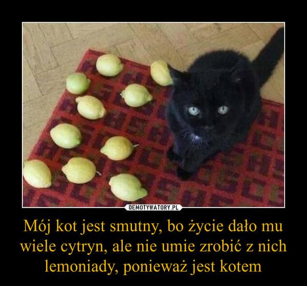 Mój kot jest smutny, bo życie dało mu wiele cytryn, ale nie umie zrobić z nich lemoniady, ponieważ jest kotem –