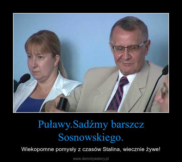 Puławy.Sadźmy barszcz Sosnowskiego. – Wiekopomne pomysły z czasów Stalina, wiecznie żywe!