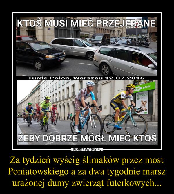 Za tydzień wyścig ślimaków przez most Poniatowskiego a za dwa tygodnie marsz urażonej dumy zwierząt futerkowych... –