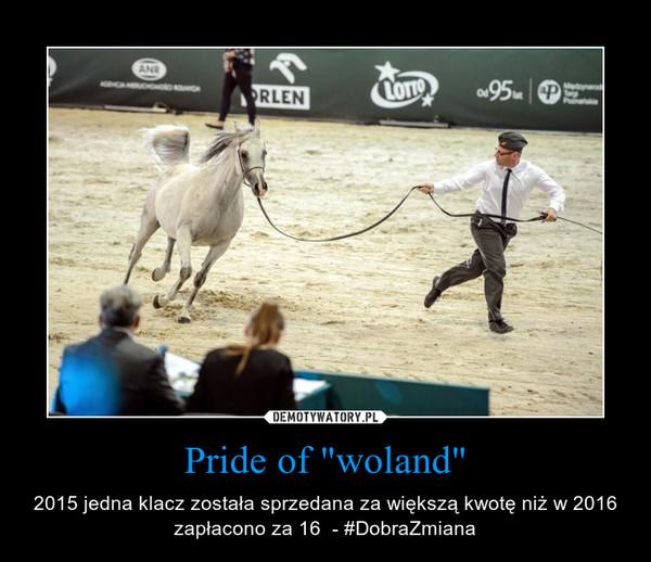 """Pride of """"woland"""" – 2015 jedna klacz została sprzedana za większą kwotę niż w 2016 zapłacono za 16  - #DobraZmiana"""