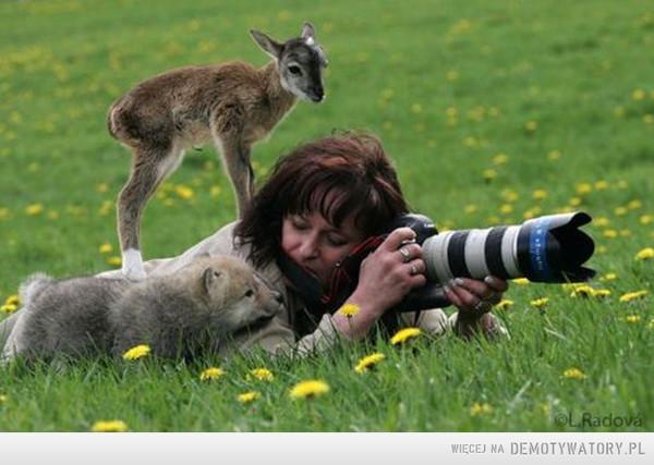 I potrzeba fotografów dwóch –