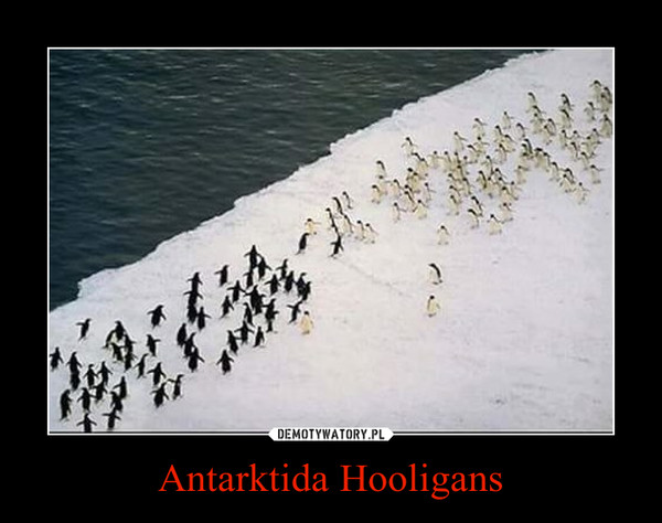 Antarktida Hooligans –