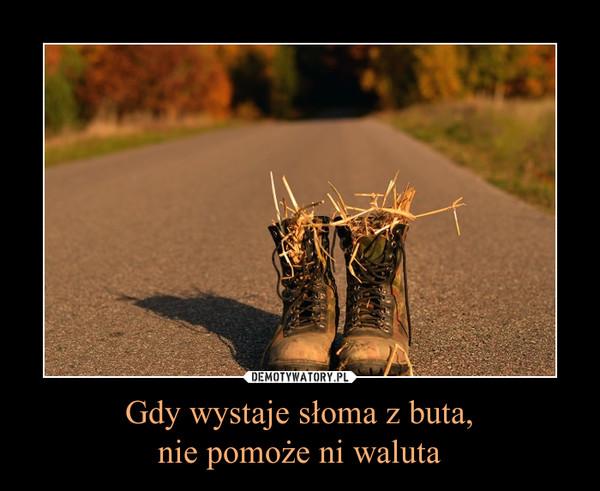 Gdy wystaje słoma z buta,nie pomoże ni waluta –
