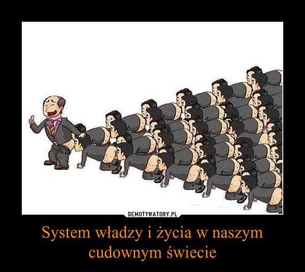 System władzy i życia w naszym cudownym świecie –