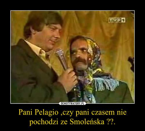 Pani Pelagio ,czy pani czasem nie pochodzi ze Smoleńska ??.