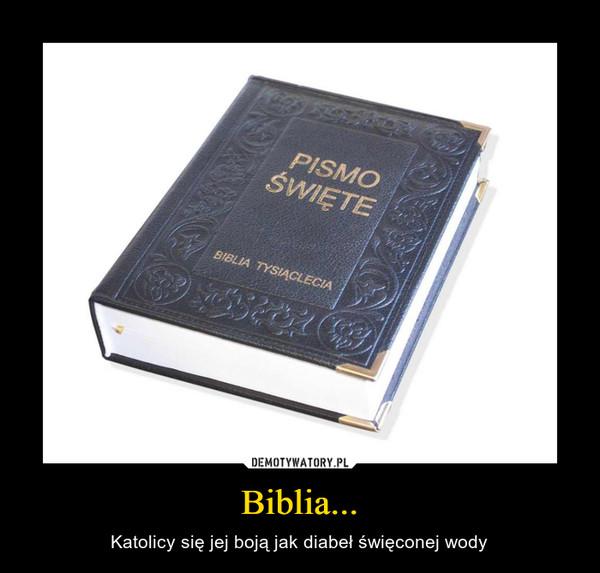 Biblia... – Katolicy się jej boją jak diabeł święconej wody
