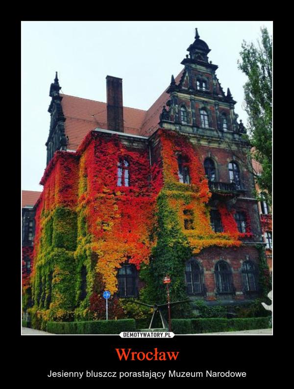 Wrocław – Jesienny bluszcz porastający Muzeum Narodowe