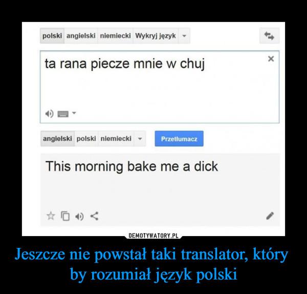 Jeszcze nie powstał taki translator, który by rozumiał język polski –