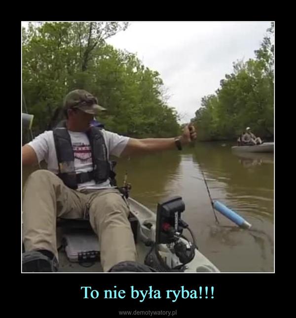 To nie była ryba!!! –