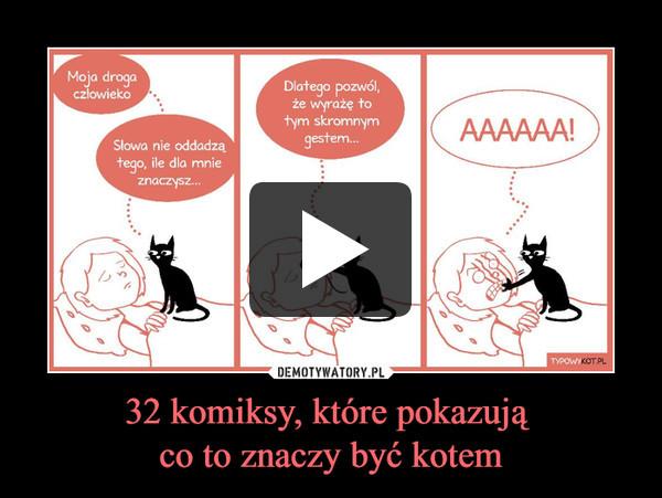 32 komiksy, które pokazują co to znaczy być kotem –