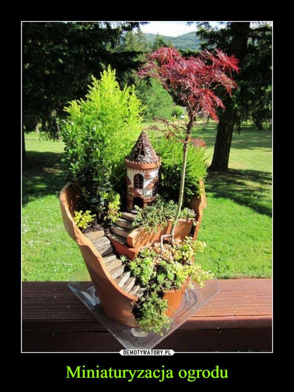 Miniaturyzacja ogrodu –