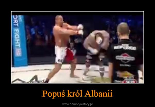 Popuś król Albanii –