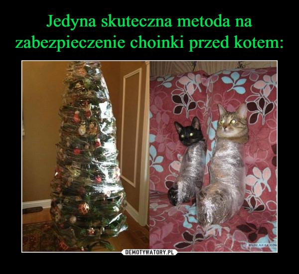 Jedyna Skuteczna Metoda Na Zabezpieczenie Choinki Przed Kotem