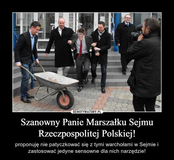 Szanowny Panie Marszałku Sejmu Rzeczpospolitej Polskiej! – proponuję nie patyczkować się z tymi warchołami w Sejmie i zastosować jedyne sensowne dla nich narzędzie!