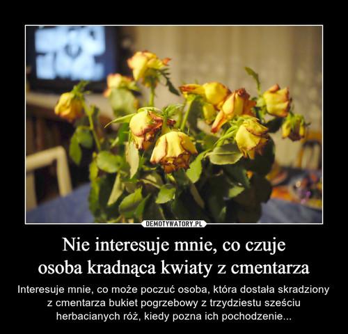 Nie interesuje mnie, co czuje osoba kradnąca kwiaty z cmentarza