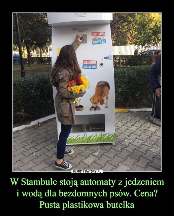 W Stambule stoją automaty z jedzeniem i wodą dla bezdomnych psów. Cena? Pusta plastikowa butelka –