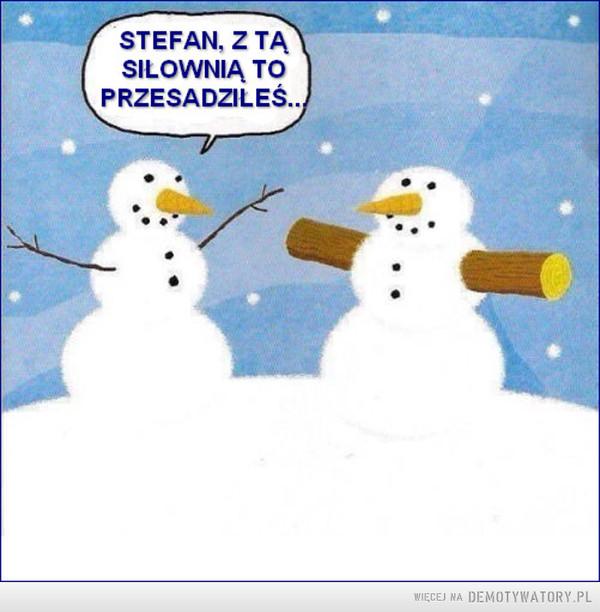 Stefan z ta siłownią to przesadziłeś –