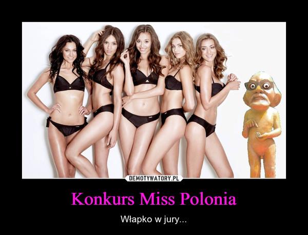 Konkurs Miss Polonia – Włapko w jury...