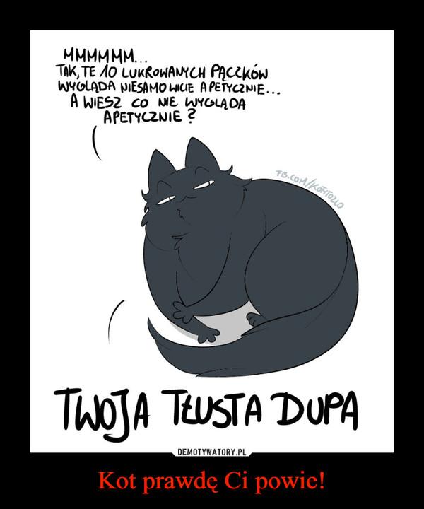 Kot prawdę Ci powie! –