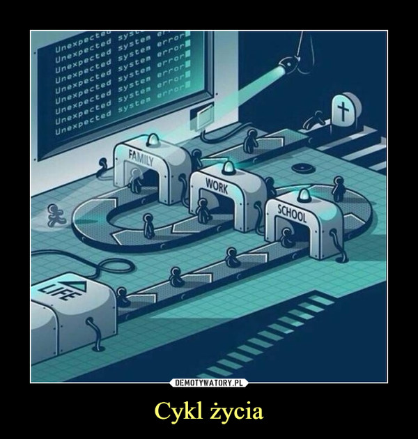 Cykl życia –  life school work family