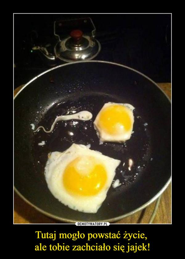 Tutaj mogło powstać życie, ale tobie zachciało się jajek! –