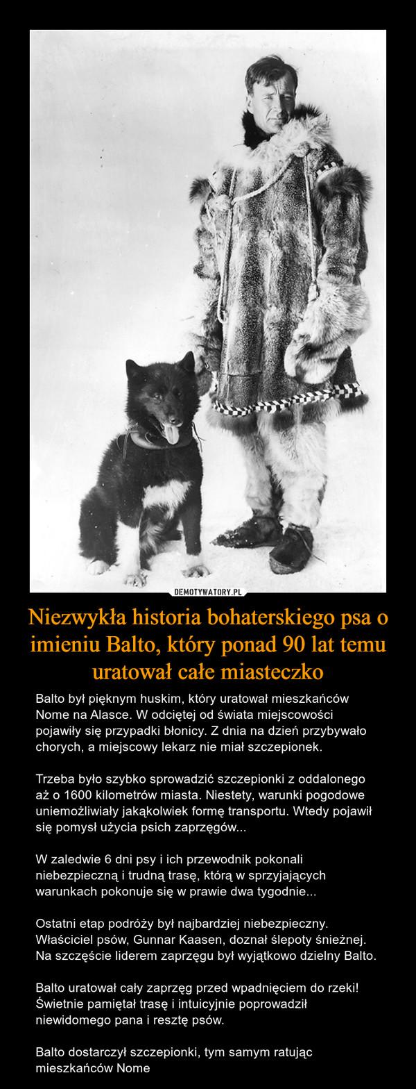 Niezwykła historia bohaterskiego psa o imieniu Balto, który ponad 90 lat temu uratował całe miasteczko – Balto był pięknym huskim, który uratował mieszkańców Nome na Alasce. W odciętej od świata miejscowości pojawiły się przypadki błonicy. Z dnia na dzień przybywało chorych, a miejscowy lekarz nie miał szczepionek.Trzeba było szybko sprowadzić szczepionki z oddalonego aż o 1600 kilometrów miasta. Niestety, warunki pogodowe uniemożliwiały jakąkolwiek formę transportu. Wtedy pojawił się pomysł użycia psich zaprzęgów... W zaledwie 6 dni psy i ich przewodnik pokonali niebezpieczną i trudną trasę, którą w sprzyjających warunkach pokonuje się w prawie dwa tygodnie...Ostatni etap podróży był najbardziej niebezpieczny. Właściciel psów, Gunnar Kaasen, doznał ślepoty śnieżnej. Na szczęście liderem zaprzęgu był wyjątkowo dzielny Balto.Balto uratował cały zaprzęg przed wpadnięciem do rzeki! Świetnie pamiętał trasę i intuicyjnie poprowadził niewidomego pana i resztę psów.Balto dostarczył szczepionki, tym samym ratując mieszkańców Nome
