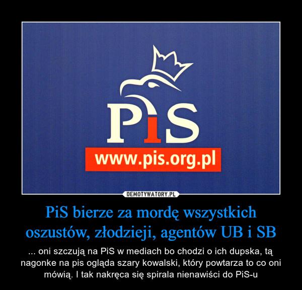 PiS bierze za mordę wszystkich oszustów, złodzieji, agentów UB i SB – ... oni szczują na PiS w mediach bo chodzi o ich dupska, tą nagonke na pis ogląda szary kowalski, który powtarza to co oni mówią. I tak nakręca się spirala nienawiści do PiS-u