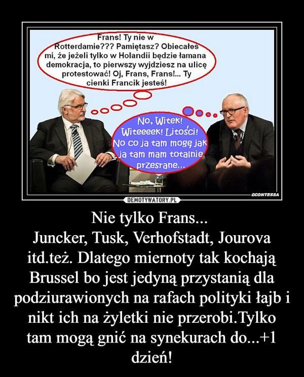 Nie tylko Frans... Juncker, Tusk, Verhofstadt, Jourova itd.też. Dlatego miernoty tak kochają Brussel bo jest jedyną przystanią dla podziurawionych na rafach polityki łajb i nikt ich na żyletki nie przerobi.Tylko tam mogą gnić na synekurach do...+1 dzień! –