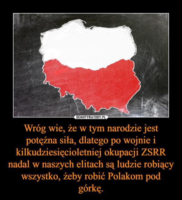Wróg wie, że w tym narodzie jest potężna siła, dlatego po wojnie i kilkudziesięcioletniej okupacji ZSRR nadal w naszych elitach są ludzie robiący wszystko, żeby robić Polakom pod górkę. –