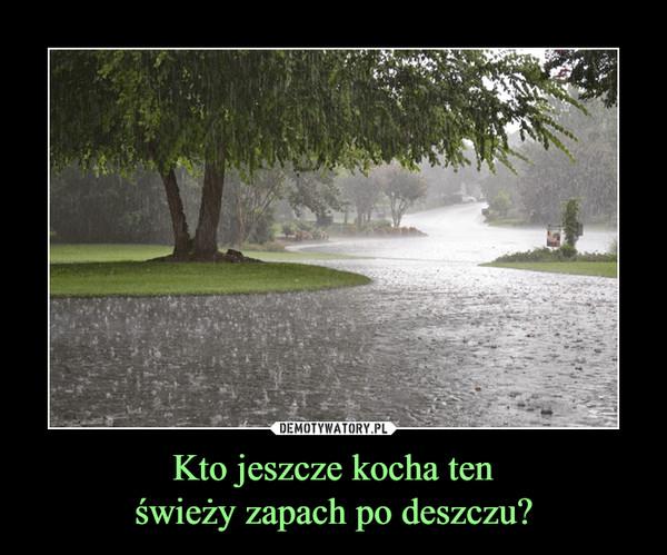 Kto jeszcze kocha tenświeży zapach po deszczu? –