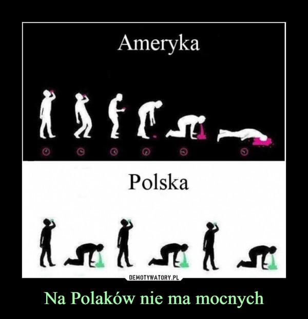 Na Polaków nie ma mocnych –