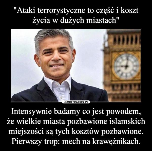 Intensywnie badamy co jest powodem, że wielkie miasta pozbawione islamskich miejszości są tych kosztów pozbawione. Pierwszy trop: mech na krawężnikach. –