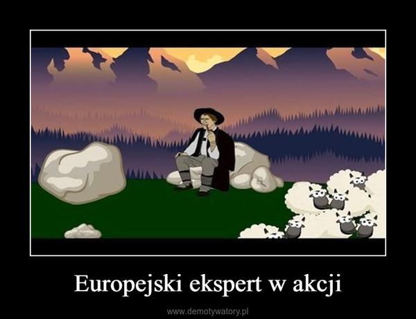 Europejski ekspert w akcji –
